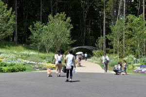 森の空中散歩道入口