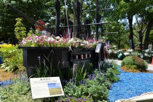 横須賀市の花壇もありました