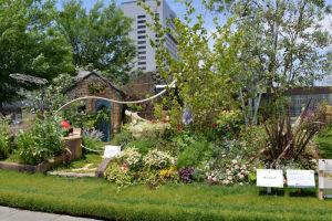 もてなしの庭の作品、横浜市長賞を獲得