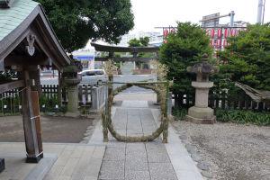 本殿からの茅の輪