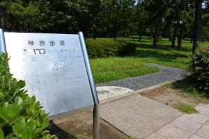 海の公園遊歩道脇の「健康歩道」