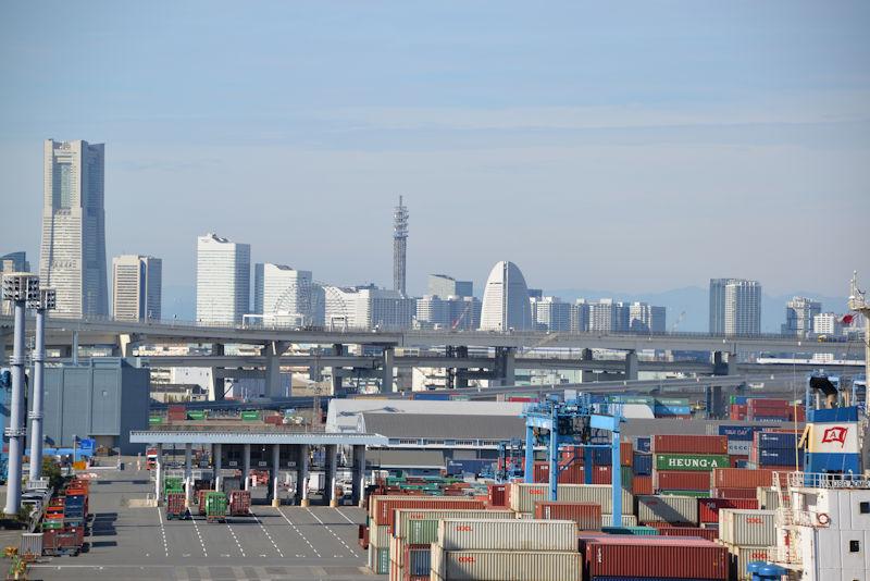 横浜港でも「ヒアリ」発見