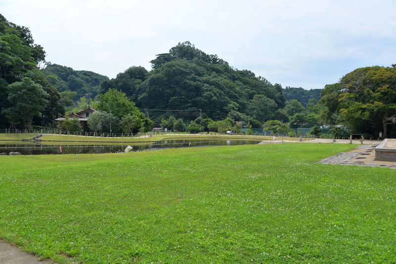 堂と池の間は芝生の広場