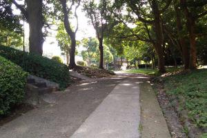 公園駐車場から5分ほど坂を上っていきます