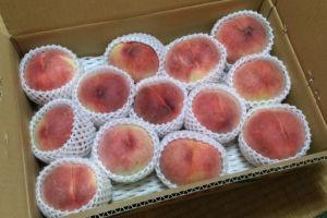桃とブドウ