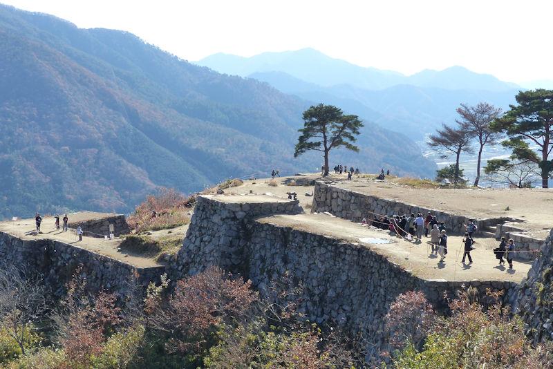 天空の城「竹田城跡」の一本松