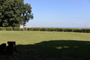 芝生の大きな広場