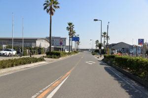 「江の島」台風21号の大きなツメ跡