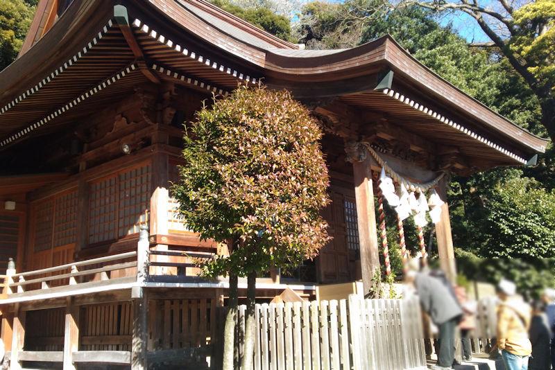 明るい日が差す瀬戸神社本殿