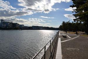 野島公園のBBQ場遊歩道