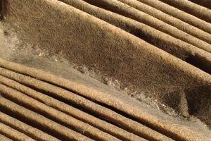フィルターの溝には小さなゴミやホコリが