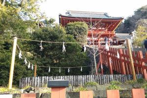 2018年1月の鎌倉鶴岡八幡宮
