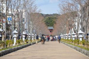 鎌倉八幡宮段葛が改修され