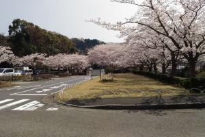 奥は鎌倉霊園入口