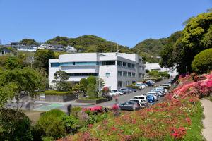 葉山町役場と花の木公園