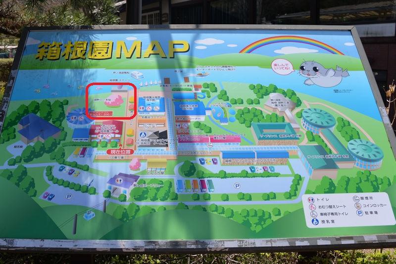 箱根園の案内図