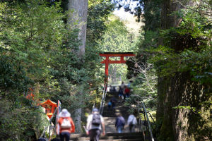 箱根神社にも寄りました