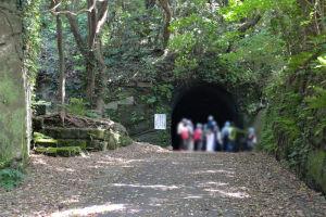 トンネルがみえています