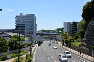 右の緑が瀬戸神社