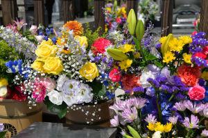 ひばりさんの命日、たくさんのお花
