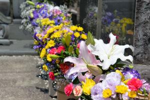 大きな百合の花も