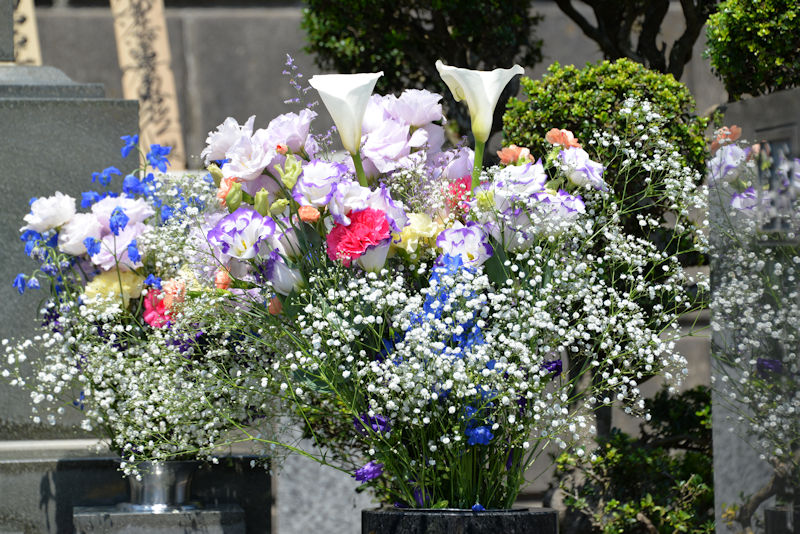 右側のお花
