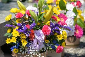 色とりどりのお花が飾られていました