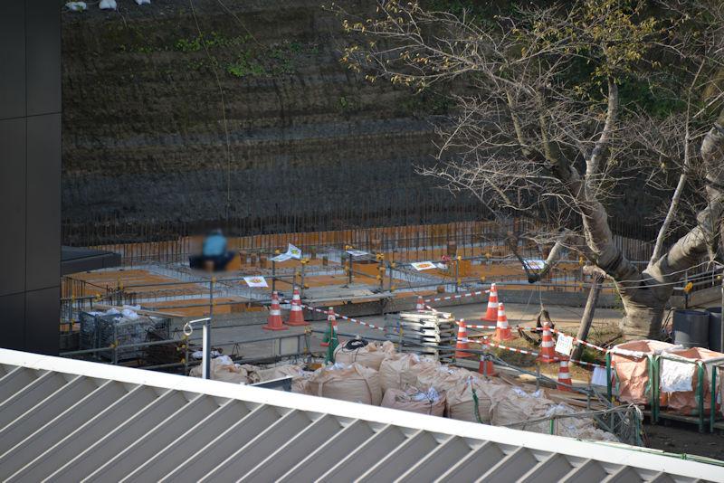 桜の木の南側では基礎工事が