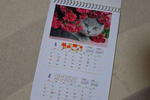 カレンダーは縦長の6枚
