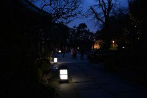 山門前、池の脇に灯る行灯