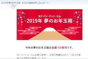 ヨドバシ.com 2019年 夢のお年玉