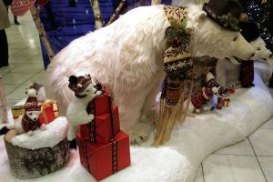 白クマさんもいました