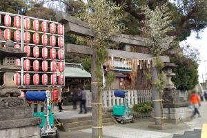 神社の鳥居には松が飾られて