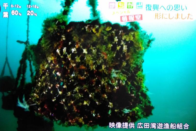 広田湾海中熟成プロジェクト