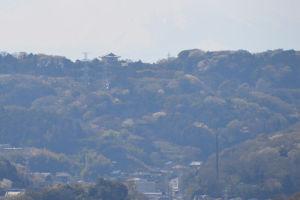 西約4.3Kmには鎌倉霊園観音堂