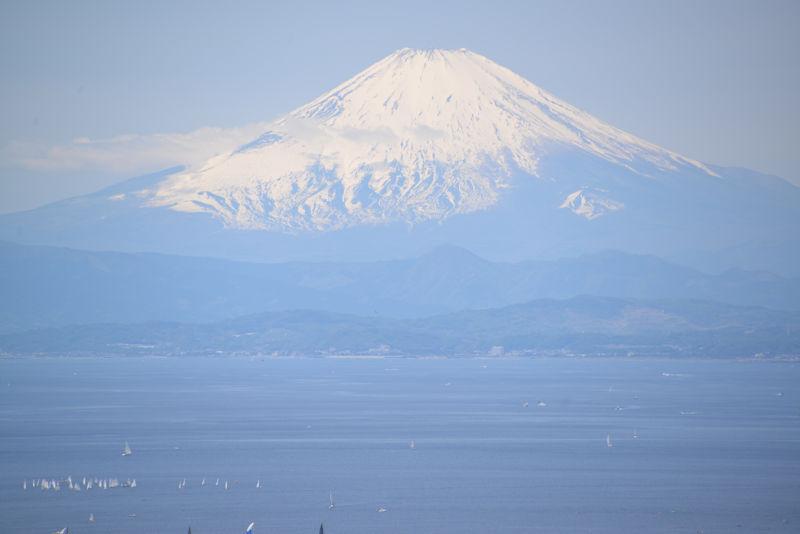 富士山がよく見えてラッキー