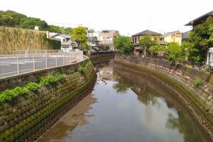 侍従川はかなり潮が引いていました