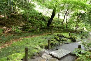 苔生した庭園