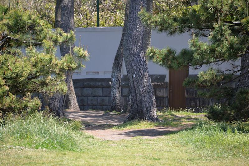 葉山御用邸の木戸がみえます