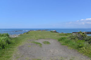 西には伊豆半島が霞んで見えます
