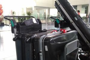 大きなスーツケースを預けました