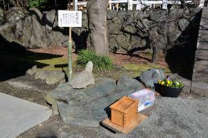 手水舎の脇には亀によく似た石が