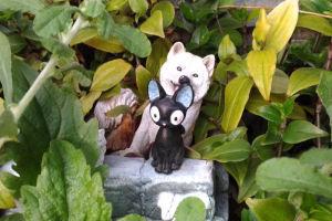 花壇にいる猫