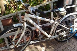 自転車と大型脚立回収されました
