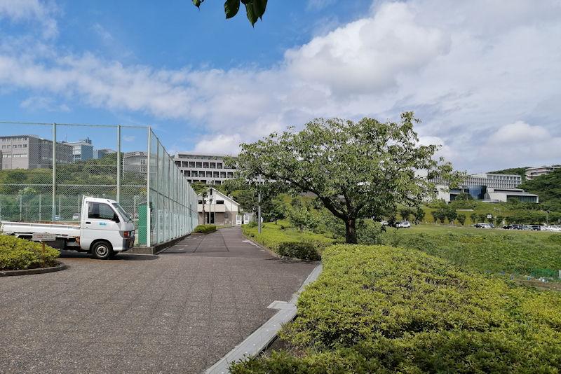 3か月ぶりの湘南国際村テニス