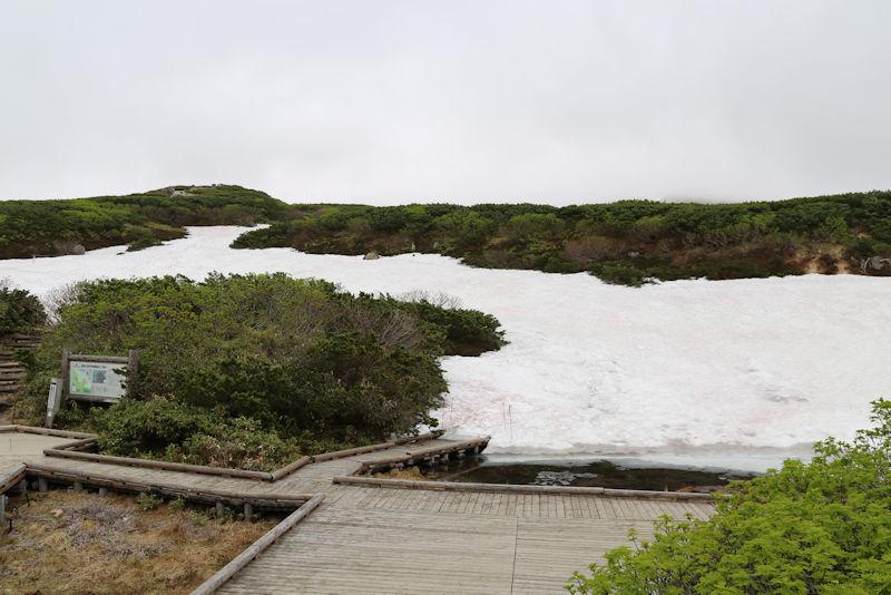 姿見の池自然探勝路