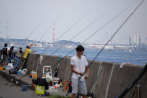 旧堤防では釣りをすることもでき