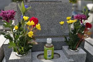 お墓を掃除してお花を手向けました