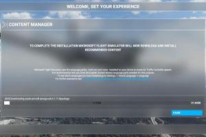 Microsoft Flight Simulator 購入