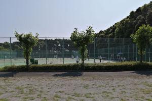 5面あるテニスコートは